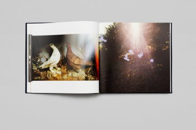 Nan Goldin Diving for Pearls 1