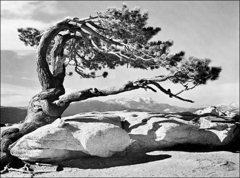 ansel adams 400 photographs pdf